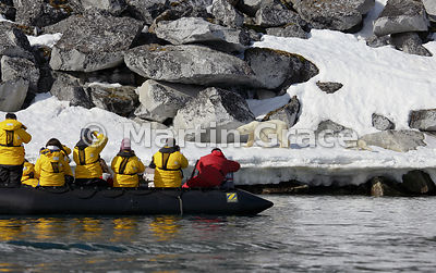 Polar tourists watching a female Polar Bear (Ursus maritimus) and her cub from a Zodiac inflatable, Holmiabukta, Svalbard