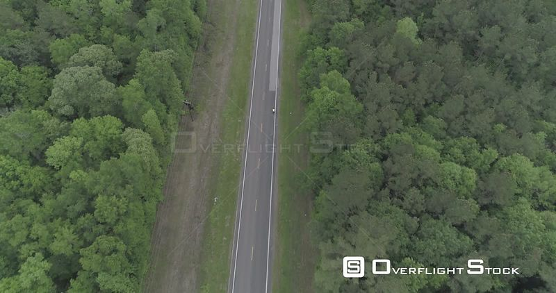 Person cycling alone down long straight tree lined road in East Texas, USA.