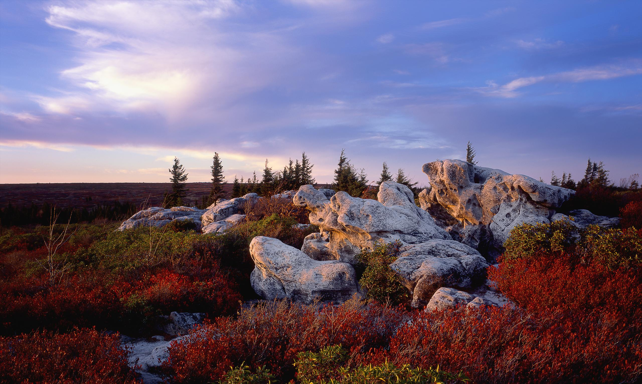 001-Blue_Ridge_D105080_Dolly_Sods_in_Fall_-_Preview