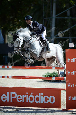Nicolas PIZARRO ,(MEX), BARBARO during Coca-Cola Trofey competition at CSIO5* Barcelona at Real Club de Polo, Barcelona - Spain