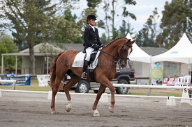 SI_Dressage_Champs_260114_044