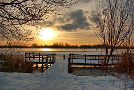 Wintermorning near the lake