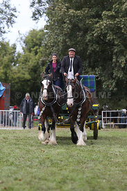 HOY_230314_clydesdales_3547