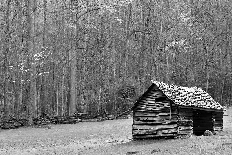 OLD CABIN ROARING FORK MOTOR NATURE TRAIL SMOKY MOUNTAINS BLACK AND WHITE