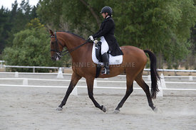 SI_Festival_of_Dressage_300115_Level_6_NCF_0193