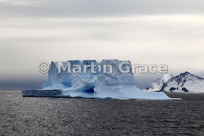 Icebergs in Bourgeois Fjord, Marguerite Bay, West Graham Land, Antarctic Peninsula