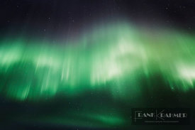 Polar light / Aurora Borealis  - Europe, Norway, Troms, Lyngenfjord, Odden - digital - Corbis image 42-46553089