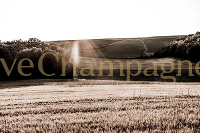 Chambrecy photos
