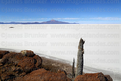 Salar de Uyuni photographs