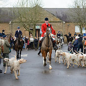 The Cottesmore Hunt in Oakham 26/12 photos