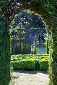 View through yew archway to box 'labyrinth' and clipped yew thistle shapes. Parkhead, Roseneath, Helensburgh, Dumbartonshire, Scotland, UK