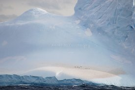 Antarctic Ice, penguins, water, mountains,
