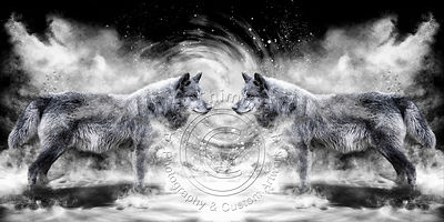 Art-Digital-Alain-Thimmesch-Loup-23