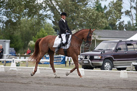 SI_Dressage_Champs_260114_046