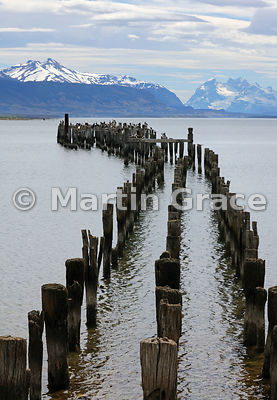 Birds roosting at the end of the old pier at Puerto Natales, Patagonia, Region XII Magallanes y Antartica Chilena, Chile
