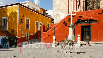 Key words: Travel / World / Mexico / Guanajuato