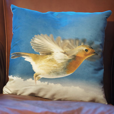 CU31 Bobbin Robin Take off Cushion