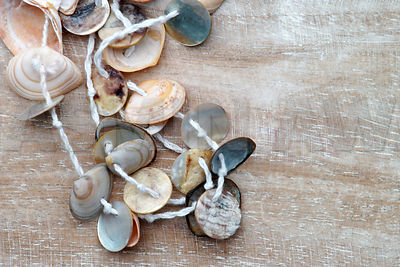 Necklace made of small seashells on wood with copy space