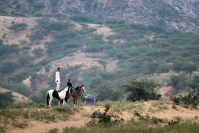 A horseman in the Thar Desert, Pushkar, Rajasthan, India