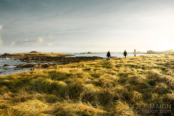 People walking along beautiful sea shore under morning sun