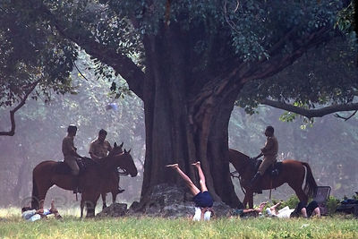 Police officers do yoga among large old trees on a foggy morning on the Maidan, a large park in central Kolkata, India.