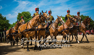 Trooping_the_Colour_8900