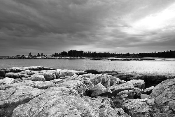 BLUEBERRY HILL SCHOODIC PENINSULA ACADIA NATIONAL PARK MAINE BLACK AND WHITE