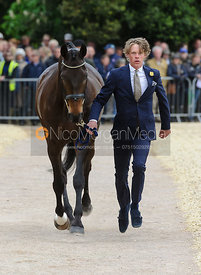 Ludwig Svennerstal and KING BOB - First Horse Inspection, Mitsubishi Motors Badminton Horse Trials 2014