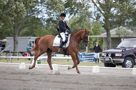 SI_Dressage_Champs_260114_047