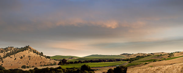 009-COMCA15010_Napa_Hills_Pano_-_Preview