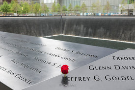 A rose placed by the names engraved in the South Pool at the World Trade Center site, on the former location of the Twin Towers in New York.