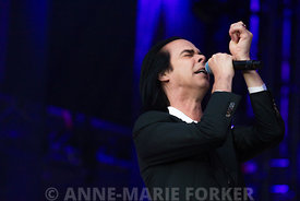 Nick_Cave_-_AM_Forker-8436