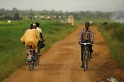 Cyclists cycling on path surrounded by fields of crops Uganda Africa