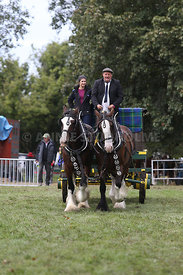 HOY_230314_clydesdales_3549