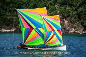 Racing yacht Martinique 5