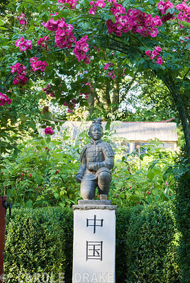 Statue of a terracotta warrior from Xi'an crouching on a pedestal marked with the word 'China', framed by pink flowered rose. Beggars Knoll, Newtown, Westbury, Wiltshire, BA13 3ED, UK