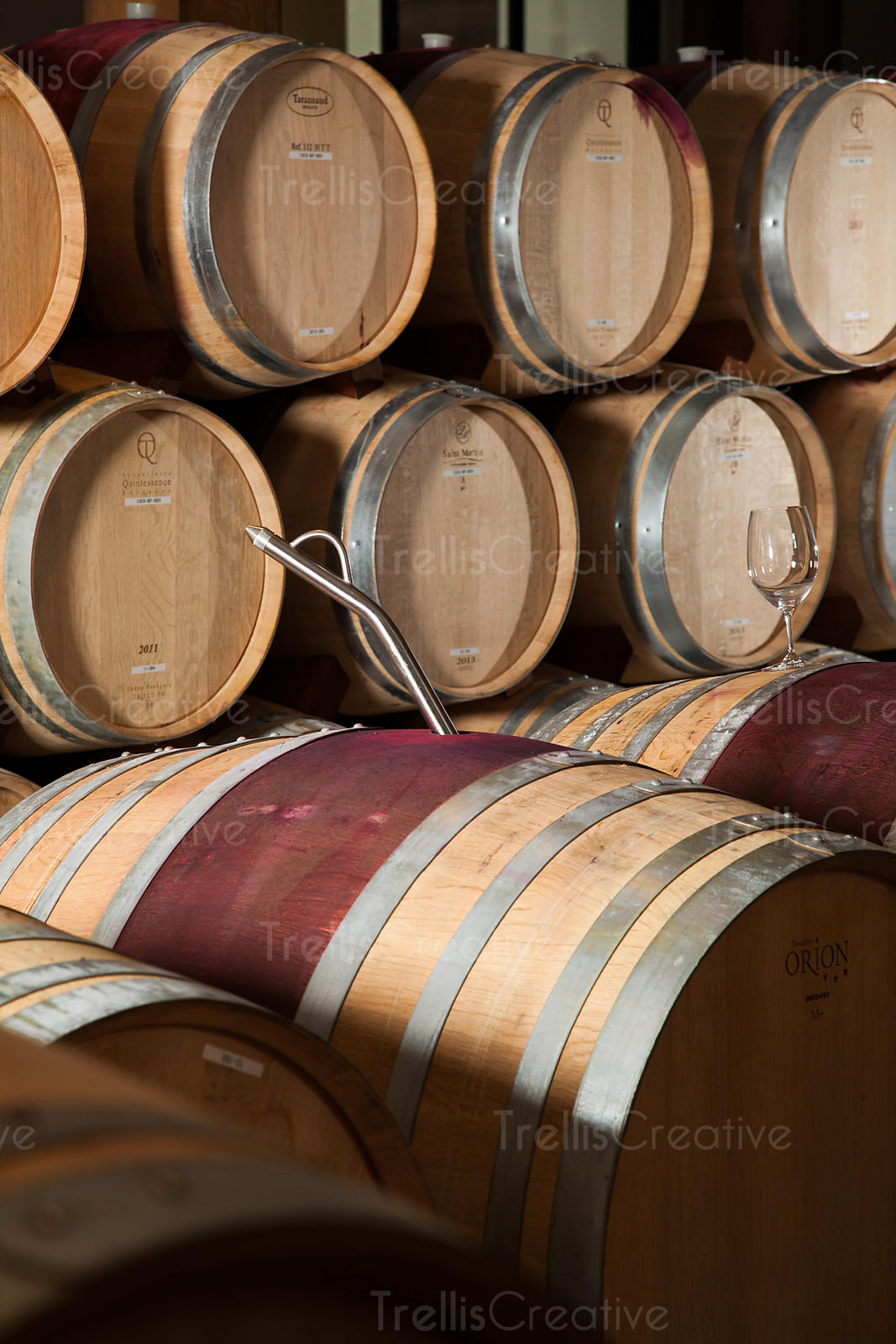 A winemaker's thief in an oak barrel inside of a winery cellar