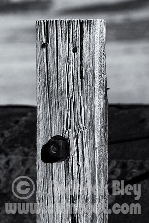 Weather Fence Post
