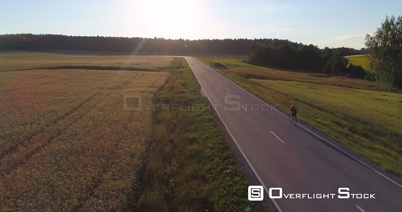 Man biking on the countryside, C4K aerial view following a biker on a asphalt road, between wheat fields, on a sunny summer evening, in Uusimaa, Finland