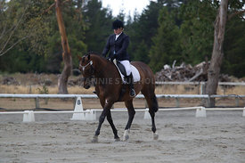 SI_Festival_of_Dressage_300115_Level_3_NCF_0092