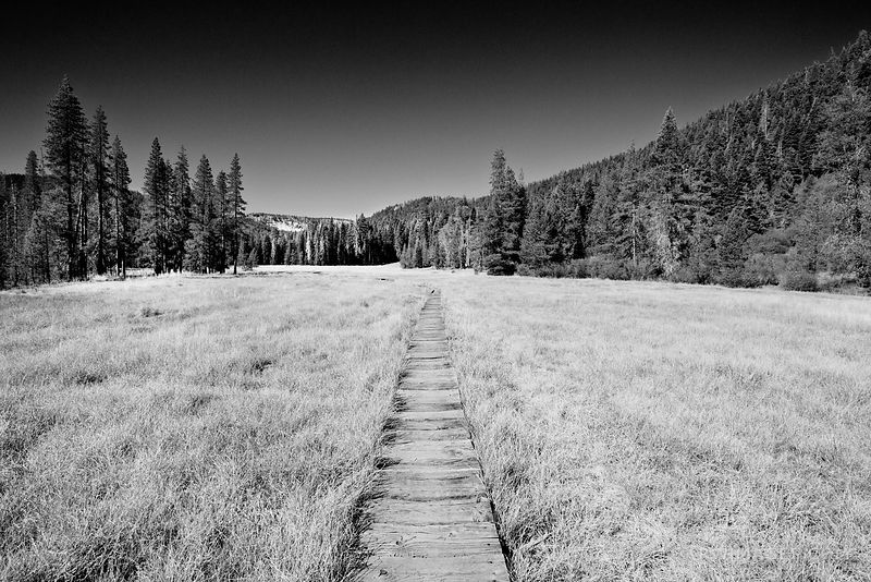 DEVILS KITCHEN TRAIL LASSEN VOLCANIC NATIONAL PARK CALIFORNIA BLACK AND WHITE
