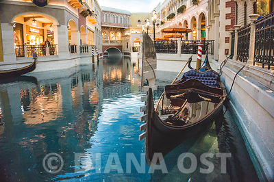 The Venetian pictures