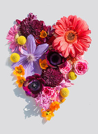 Heart_flolwers_4289