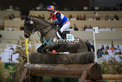 [CHI GENEVE] CIC5*: Cross Indoor | 10.12.2016 photos