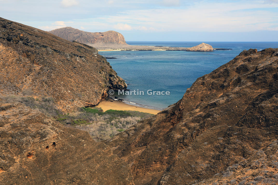 The volcanic landscape at Punta Pitt, showing deciduous shrub vegetation above the beach, Punta Pitt, San Cristobal, Galapagos