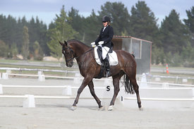 SI_Festival_of_Dressage_310115_Level_4_Champ_0601