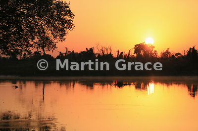 Pantanal sunrise, River Cuiabá, Northern Pantanal, Mato Grosso, Brazil