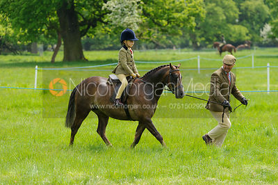 Class 40 - BSPS RIHS Lead Rein Pony of Hunter Type photos