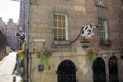 The Toon Coo-ncillor sculpture on the Side of the Rowan Tree Bar