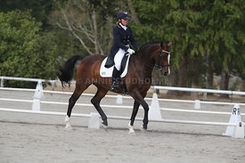 SI_Festival_of_Dressage_300115_Level_9_SICF_0457